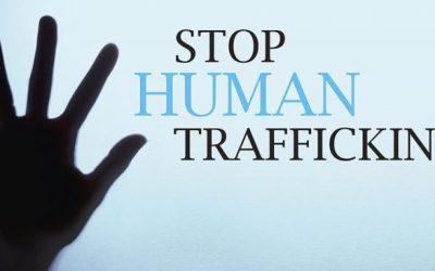 "Webinar: ""Stop Human Trafficking. What can we do?"""
