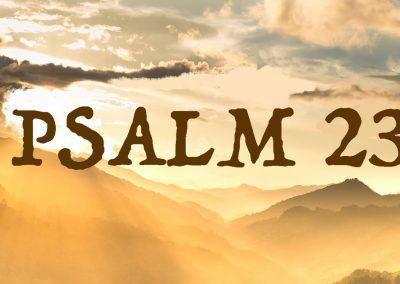 Psalm 23 Reflection